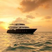 safaris-liveaboards-anastasia-snorkeling-in-maldives